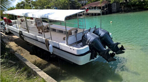32ft Professional Diving and Scuba Boat for sale