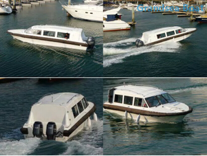 9.8m Fiberglass Speed Tourist/passenger Boats for Sale